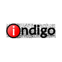 Система тестирования «INDIGO»