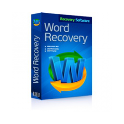 RS Word Recovery