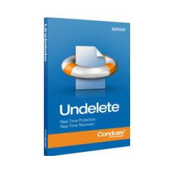 Diskeeper Undelete 10