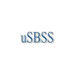 uSBSS - синхронизация распределенных гетерогенных баз данных (UNICODE-версия)